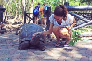 Escursione tartarughe Zanzibar