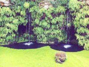 Fontana del diluvio Villa Lante